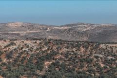 الطيبة - شرق البلدة - East of Taybeh